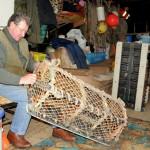 St Abbs Fisherman